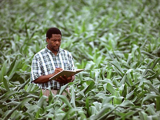 crop scientist