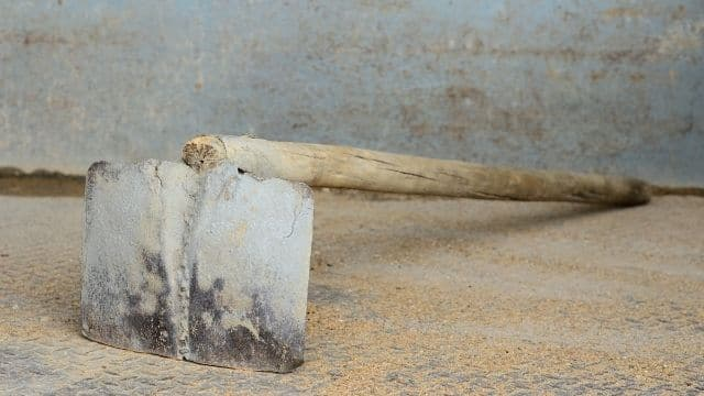 hoe with wooden handle