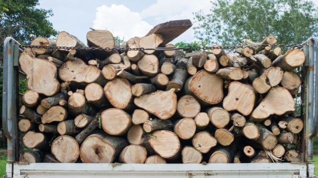 Properties of good timber
