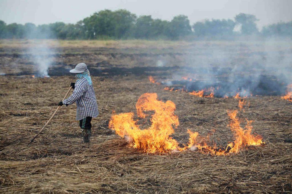 Open agricultural burning